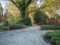 Bredaseweg 387 in Tilburg 5037 LD