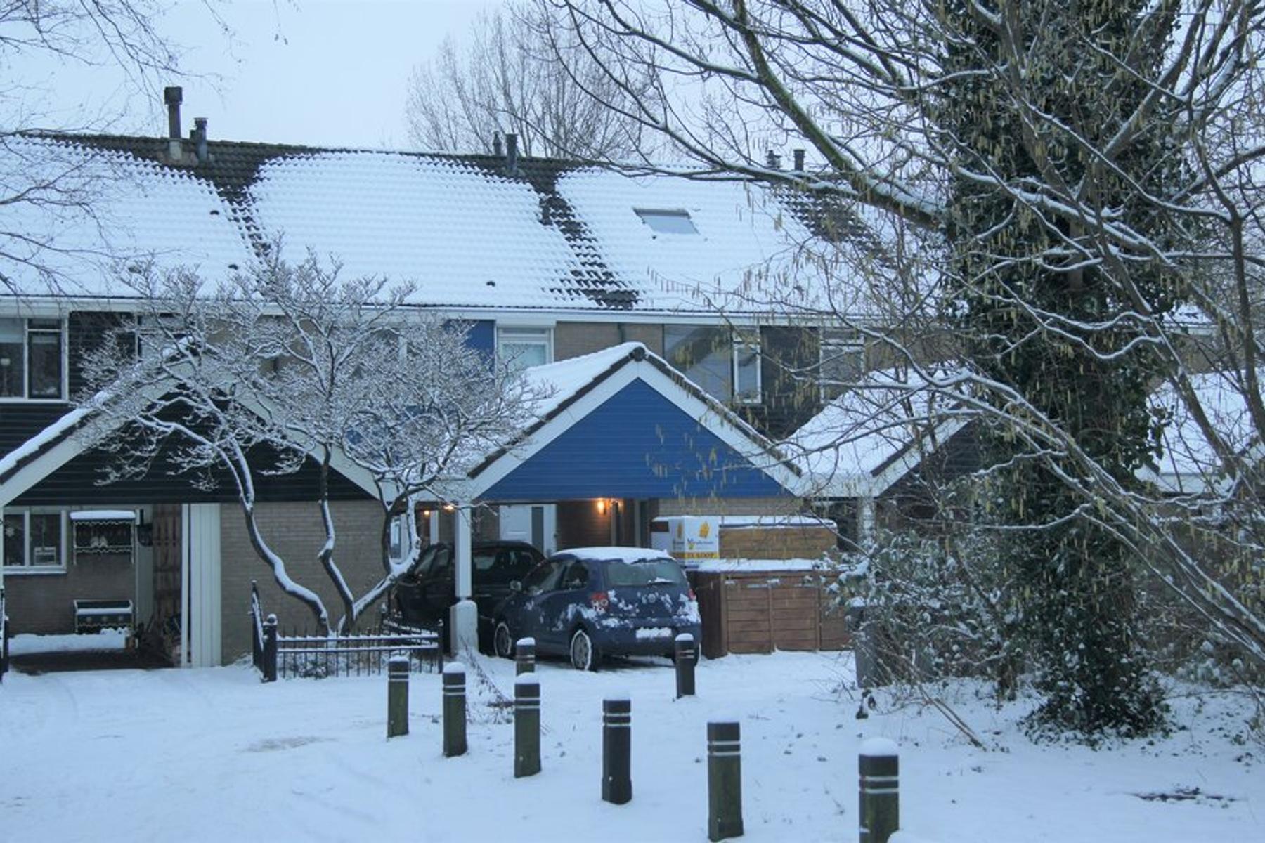 Esdoornhof 198 in Kampen 8266 GN