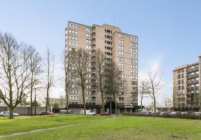 Scottlaan 262 in Eindhoven 5623 RE