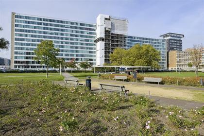 Bos En Lommerplantsoen 77 G in Amsterdam 1055 AA