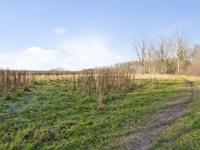 Herdershoefje 29 in Wemeldinge 4424 DA