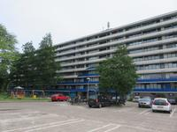 Rhodosdreef 62 in Utrecht 3562 TG