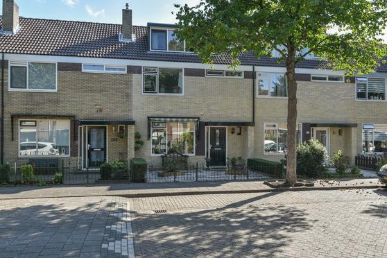 Stetwaard 118 in Alkmaar 1824 VE