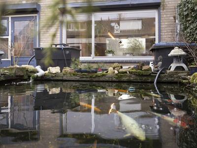 Dennenlaan 14 in Fijnaart 4793 BL