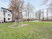 Concordialaan 53 in 'S-Hertogenbosch 5223 ZM