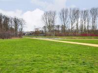 Wijkeroogstraat 38 in Velsen-Noord 1951 AB