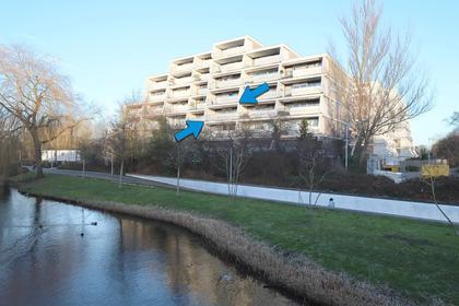 Molenzicht 23 in Leiden 2317 RK