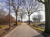 Eikelenbosserdijk 16 in Melderslo 5962 NV