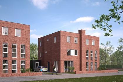 Klimopwal in Emmen 7813 CP