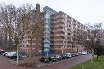 Fluitekruidweg 109 in Zaandam 1508 AC