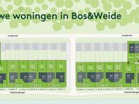 De Streek 'Bos&Weide' 2/1-Kap (Damhert) in Etten-Leur 4876 WC
