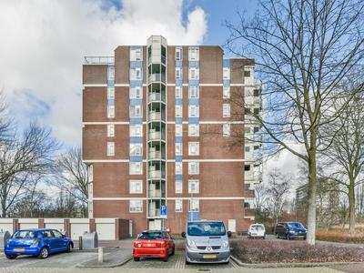 Logger 72 * in Amstelveen 1186 RT