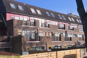 Populier 207 in Heerenveen 8446 ST