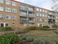 Lavendelhof 19 in Noordwijk 2203 EE