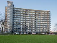 Jan Dammassestraat 20 in Rotterdam 3078 HL