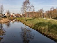 Hooiland 60 in Drachten 9205 EC