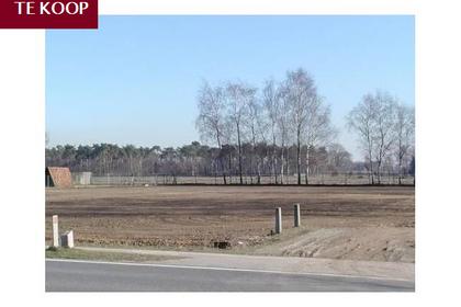 Prinsenlaan 84 Weelde in Hilvarenbeek 5080 AA