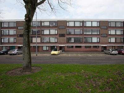 Wilgensingel 63 in Rozenburg 3181 XK