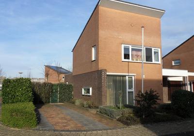 De Schildwacht 8 in Steenwijk 8332 GS