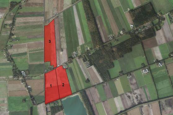 Kopstukken/ Jipsingbourtange in Mussel 9584 TC