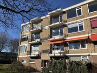 Ellemare 119 in Rotterdam 3085 JP