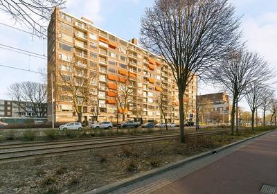 Molenvliet 132 in Rotterdam 3076 CL