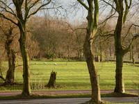 Backershagenlaan 66 in Wassenaar 2243 AE