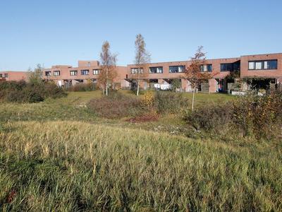 Duinvoet 74 in Lelystad 8242 RC