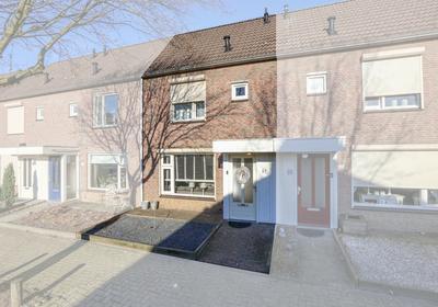 Haagbeuk 67 in Venlo 5925 HN