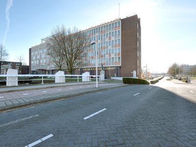 Tivolilaan 183 in Arnhem 6824 BV