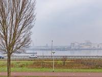 IJmuiderstraatweg 78 in IJmuiden 1972 LE