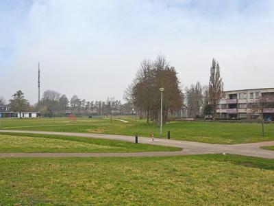 Vogelwikke 6 in Elburg 8081 SM