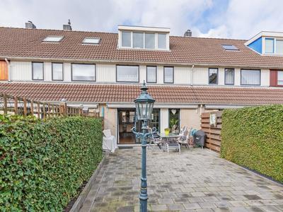 Floraronde 224 in Velserbroek 1991 LE