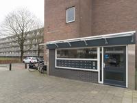 Schrijverspark 143 in Veenendaal 3901 PH