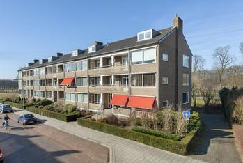Witsenstraat 6 2 in Arnhem 6813 GV