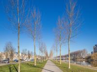 Catalpastraat 65 in Almere 1326 DM