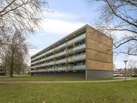 Leimuidenplaats 164 in Arnhem 6843 HJ