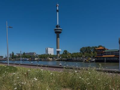 Sint-Jobskade 734 in Rotterdam 3024 EN