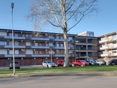 Orionsingel 194 in Arnhem 6832 GJ