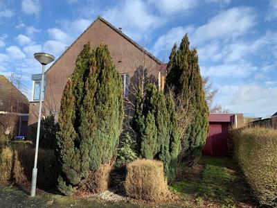Vogelwikkestraat 2 in Zevenbergen 4761 ZH