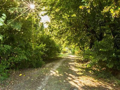 Chemin De Pramaiche in Mane
