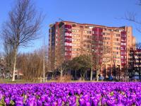 Leonard Springerlaan 145 in Haarlem 2033 TB