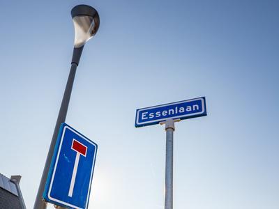 Essenlaan 90 in Dirksland 3247 GG