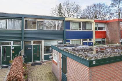 Schrijnwerkershorst 229 in Apeldoorn 7328 PB