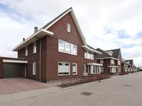 Dwergmeeuw 10 in Heerhugowaard 1704 XK