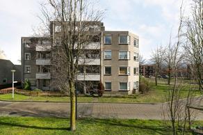 Bijsterveld 81 in Oosterhout 4902 ZN