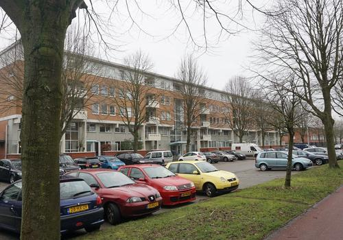 S.O.J. Palmelaan 243 in Groningen 9728 VJ