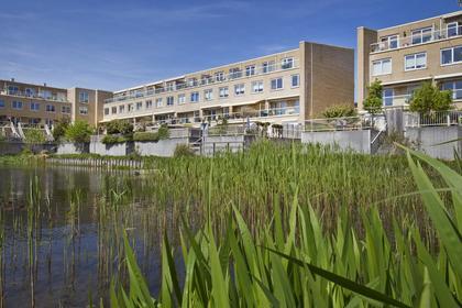 Sara Roosstraat 36 in Zandvoort 2041 EK