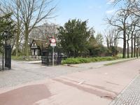 Hanedoesstraat 115 in 'S-Gravenhage 2597 XE
