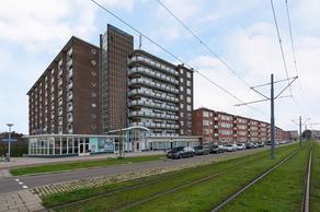 Rotterdamsedijk 169 in Schiedam 3112 AD